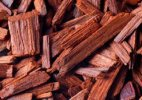 Third phase of red sanders auction may fetch over Rs 800 crore