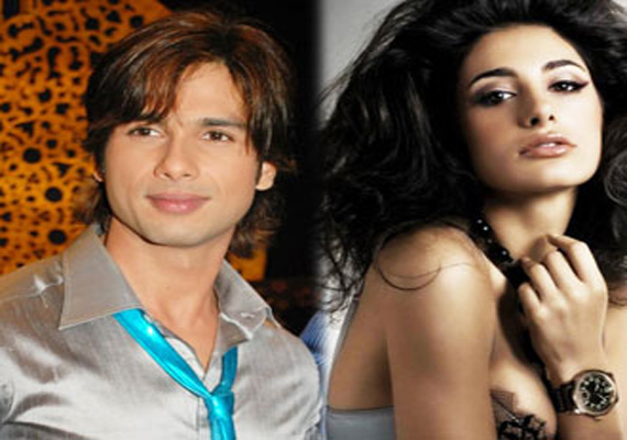 Shahid, Nargis To Play Lead Pair In Siddharth's Film