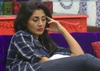 bigg boss 9 rimi sen elimination