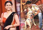 Comedy Nights With Kapil: Will Kapil Sharma's dog Zanjeer be a new family member after leap&#63
