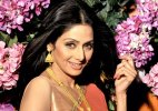 Bollywood wishes their 'favourite' Sridevi on her birthday