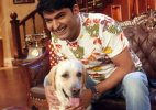 Kapil Sharma applauded by PETA for compassion towards animals