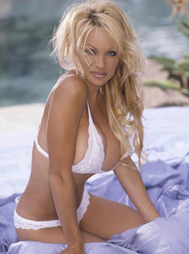 Apologise, but, sexy photos of pamela anderson apologise