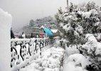 Head to Shimla, Kufri for white Valentine's Day