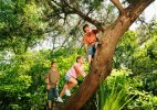 After yoga, climb a tree to boost your memory