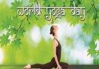 Massive preparations underway to commemorate Yoga day at UN