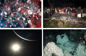 Top 10 discoveries of 2012