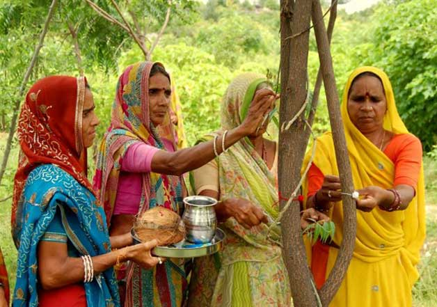 piplantri rajasthan village