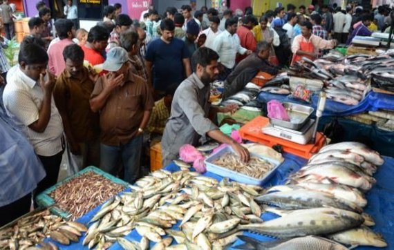 39 india way behind china in fish production 39 for Chinese fish market near me