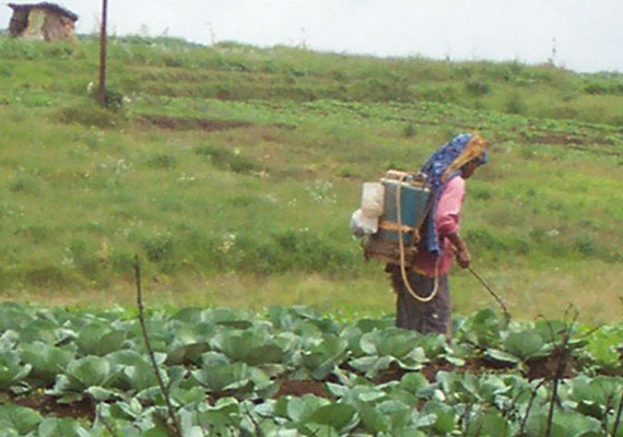Meghalaya to formulate plan to help farmers