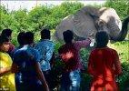 Delhi zoo gets record 22 lakh visitors this summer