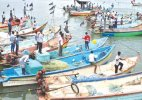 Sri Lankan Navy arrests 15 Indian fishermen