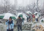 Heavy rains, snow predicted in Himachal in next 48 hours