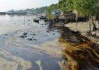 Climate change-hit women in Sundarbans turn photographers