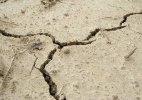 Even moderate tremors can cause heavy casualties in Delhi: Experts