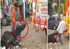 Video clip showing VHP workers kicking cow goes viral
