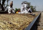 Gujjar agitation: Rajasthan High Court pulls up state govt