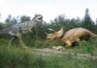 Indian scientists discover plant species of dinosaur age