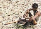 Maharashtra likely to bring farmer suicide under insurance umbrella