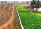 Centre mulls extending land compensation provisions