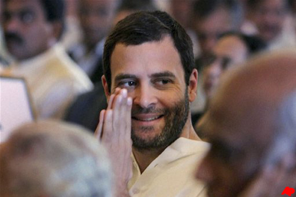Rahul Gandhi takes charge of Congress party's preparations for Lok Sabha polls