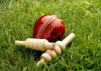 Essel Group denies to set up parallel cricket boards