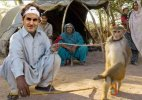 Roger Federer visits India, courtesy Indian fans and Photoshop