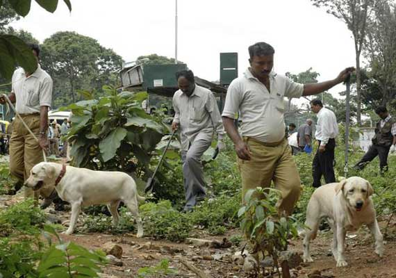 Police sniffer dog's bark lands man in Mumbai jail for 10